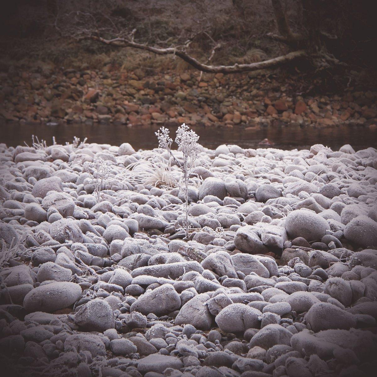 Versteckt in den Highlands - Stone of Scone